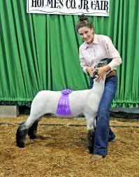 Sprang earns <b>supreme sheep</b> showmanship grand champion at the ...