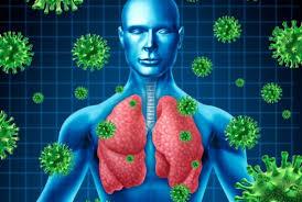 「重症急性呼吸器症候群」の画像検索結果