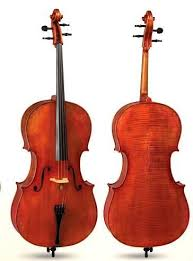 D Z Strad Cello Model 1100 <b>Professional Handmade 4/4 Full</b> Size(1 ...