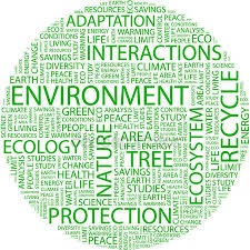 conservation of environment essay conservation of environment essay pdf