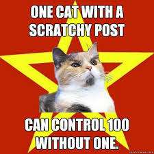 One Cat With A Scratchy Post Cat Meme - Cat Planet | Cat Planet via Relatably.com