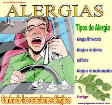 Resultado de imagem para dia nacional de Prevenção da Alergia