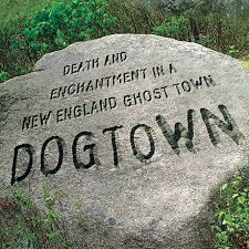 Image result for Dogtown commons