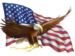 Resultado de imagem para bandeira norte-americana
