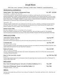 Professional Resume Writing Service  executive resume writing     soymujer co