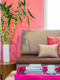 feng shui home staging tips interior design styles and color schemes for home decorating hgtv appealing feng shui home