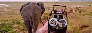 Image result for tourism in tanzania