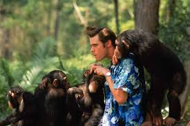 ace ventura when nature calls jpg quality strip all strip all adele s