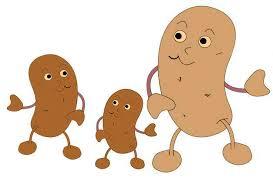 Bildergebnis für cdu Kartoffelfest