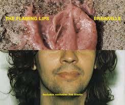 The <b>Flaming Lips</b> - <b>Brainville</b>   Releases   Discogs