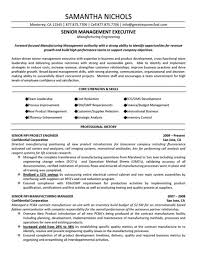 Sales Executive Resume Sample Pdf With Best Sales Resume Samples     PREVOSS COM