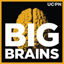 Big Brains