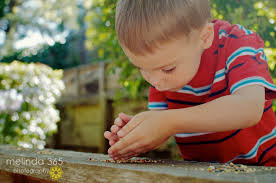 meticulous showing great attention to detail very careful and meticulous showing great attention to detail very careful and precise that cute little boy in the picture above is so meticulous in his work