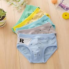 5 <b>Pieces</b> / <b>Lot Boys</b> briefs gifts <b>Underwear</b> Boy Organic Cotton ...