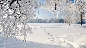 Image result for a pictures of a snow covered fields