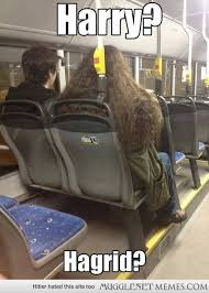 Spotted on a bus earlier this year. - MuggleNet Memes via Relatably.com