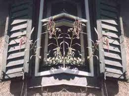 """""""kubistisches"""" Fenster mit blühendem Fuchsschwanz von <b>Willi</b> und <b>Inga</b> <b>...</b> - kubistfenster"""