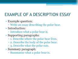 description of essay types of essays