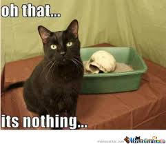 Evil Cat Is Evil by hippapopolis - Meme Center via Relatably.com