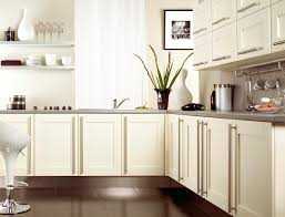 white kitchen doors decoration enchanting white themes kitchen decoration with l shape kitchen cabine