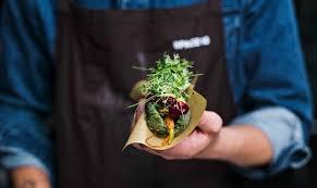 <b>IKEA</b> создает еду будущего из червей, жуков и водорослей ...