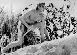 Image result for johnny weissmuller