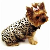 <b>Dog Clothes</b> - Stylish Designer Dog Apparel in All Sizes