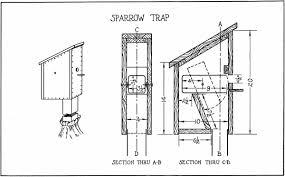 Bird Houses Boys Can Build  SPARROW TRAP