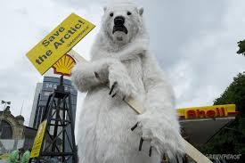 Image result for polar bear shell protest
