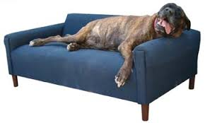 pet furniture extra extra large pet sofa big dog furniture