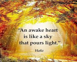 Image result for hafiz heart