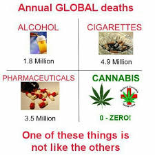 Image result for pharmaceutical death drugs