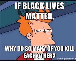"Politically Incorrect Meme Utterly DESTROYS ""Black Lives Matter ... via Relatably.com"
