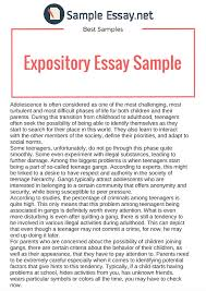 expository essay samples writing tips sample essay exposition essay examples