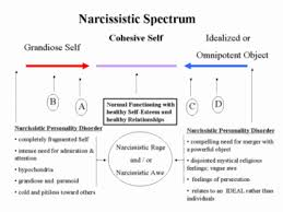 Image result for narcissist