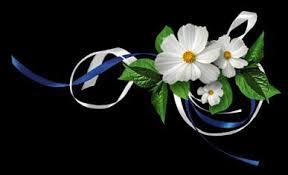 Risultati immagini per beautiful flowers and butterflies