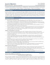 Business Development Resume Example An Expert Resume