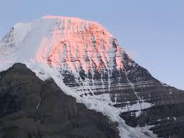 Monte Robson