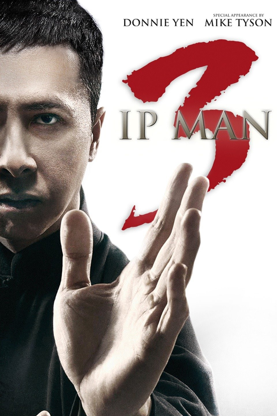 Ip Man 3 (2015) Dual Audio {English-Chinese} 720p