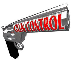 gun control essay  homepage gun control