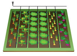 Small Picture The 25 best Irrigation system design ideas on Pinterest Garden