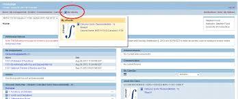 WebAssign Help  HuskyCT screen shot