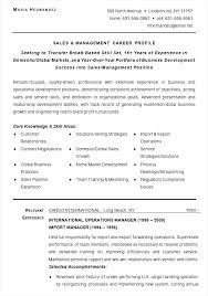 sales  amp  management career profile template   free samples    sales  amp  management career profile template