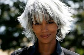 Image result for gray hair models