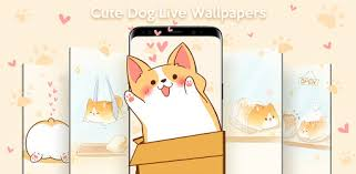 Cute <b>Corgi Dog</b> Live Wallpapers - Apps on Google Play