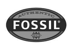 Бренд <b>Fossil</b> - товары, отзывы, магазины | StyleTopik
