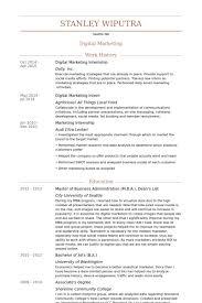 digital marketing internship resume samples marketing internship resume samples
