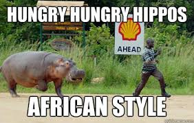 Hungry Hungry Hippos African style - hippos africa - quickmeme via Relatably.com