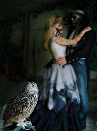 writing a paragraph essay >> unprecedented quality of online bird of prey shot on film styled halloween shoot
