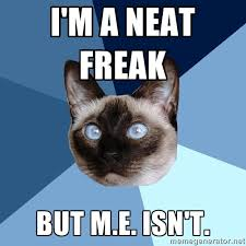 I'M A NEAT FREAK BUT M.E. ISN'T. - Chronic Illness Cat | Meme ... via Relatably.com